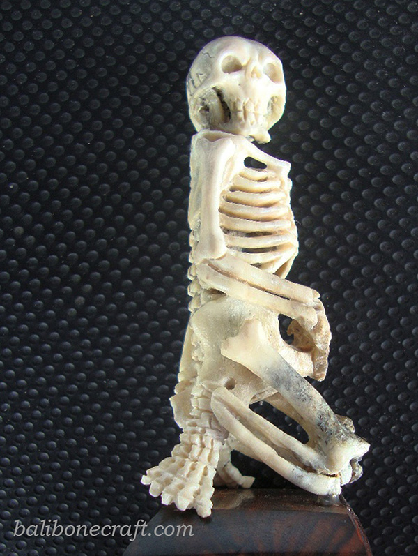 Skull Sitting