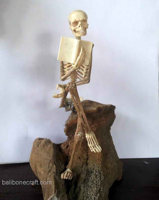skull-read